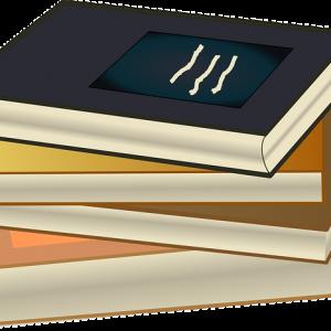 Desarrollo de Manuales de Procedimientos de Seguridad